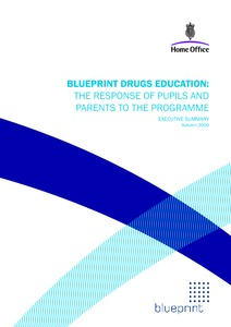 Drugs and alcohol ireland blueprint drugs education the home blueprint drugs education the response of pupils and parents to the programme executive summary malvernweather Choice Image